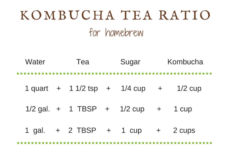 kombucha tea ratios